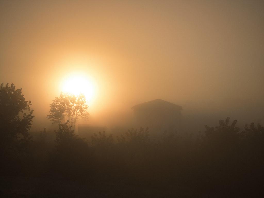 Рассвет - Dawning
