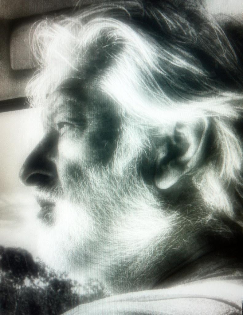 The Old Man and the Savannah - Jan 1, 2017