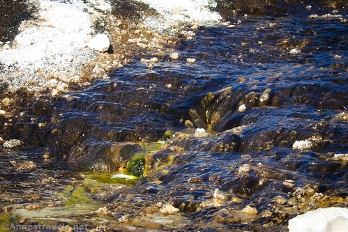 One of the water channels below Keane Spring, Death Valley National Park, California
