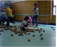 Presentazione delle patate e attività libere