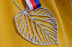 Krása a univerzalita. Účastníci Sokolského běhu republiky získají originální medaili