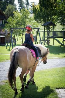 Urlaub am Ponyhof