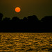 20040118-African sunset sep 91.jpg
