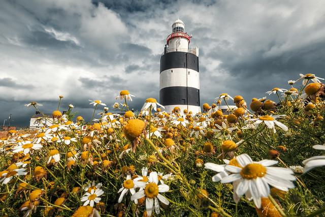 Hook Lighthouse (Ireland)