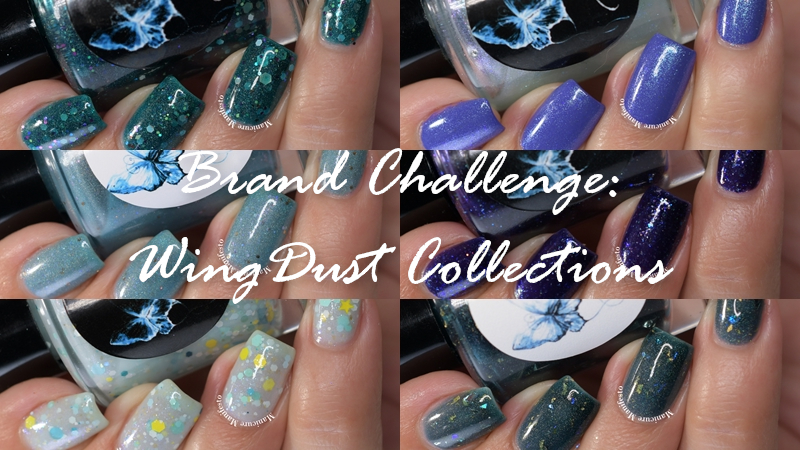 WingDust Collections Review
