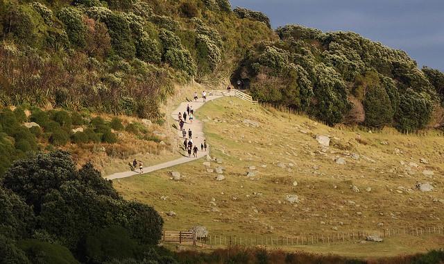 Trekking to the summit, Mauao, Mt Maunganui Beach, New Zealand