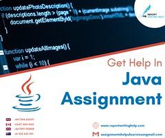 Java Assignment Help!