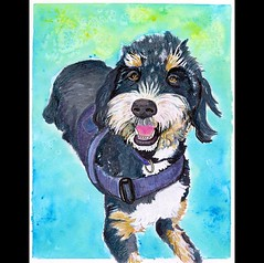 Portrait of @loretta_the_bernedoodle ud83dudc3e . . #art #petportrait #commission #bernedoodle #bernedoodlesofinstagram #bernedoodles #dog #painting #cute #instaart