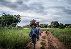 Rural Bagan.