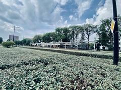LocHal I Tilburg