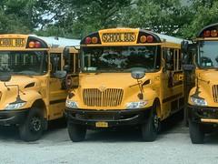 Montauk Bus 875