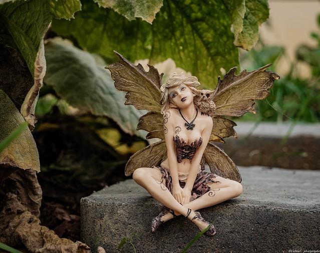 La fée dans le jardin