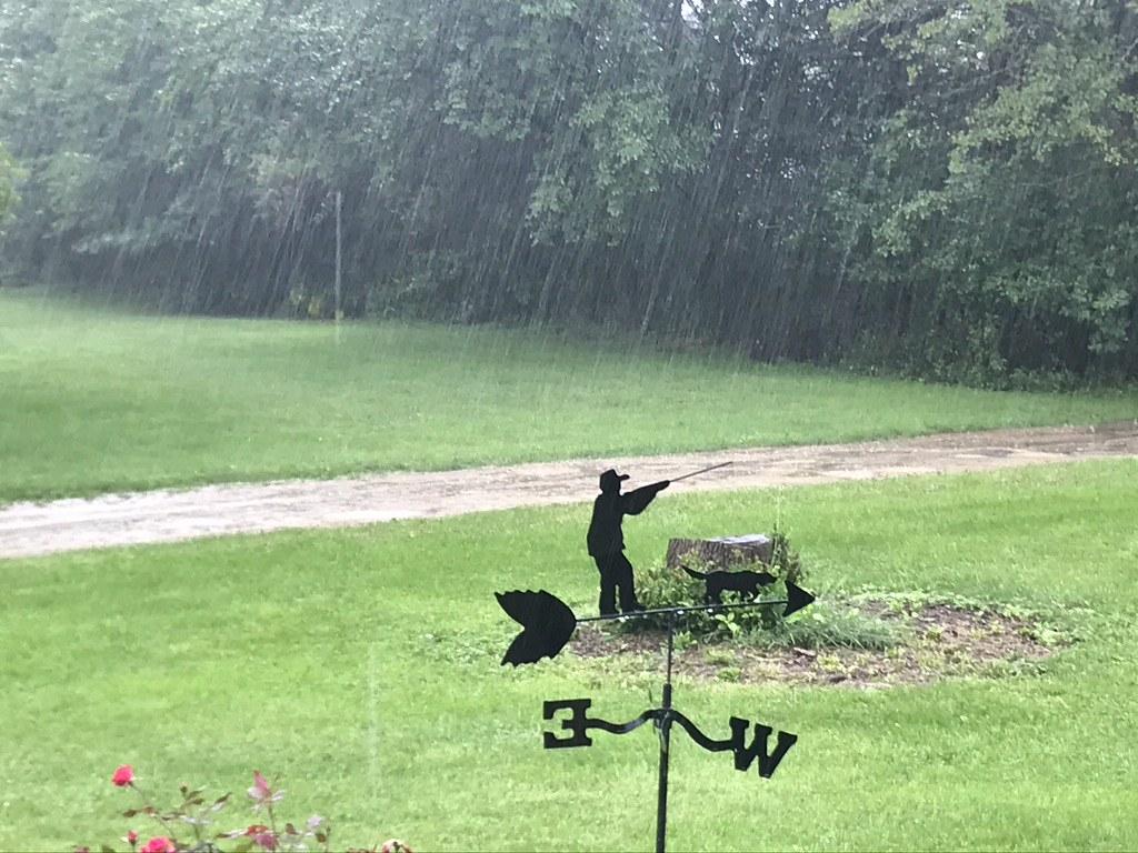 Rain Sept ! 2021