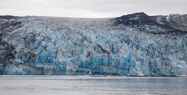 J Hopkins glacier-9658