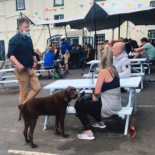Outdoor Dining in Lower Largo for Patrons and Dogs