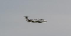 L-29 Delfín ACM Warbirds