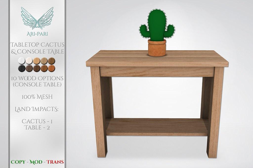 [Ari-Pari] Tabletop Cactus & Console Table