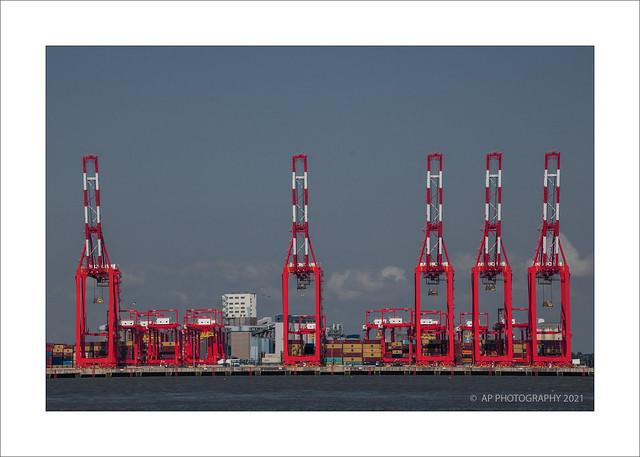 Five Cranes