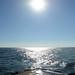 Lake Michigan Late Afternoon