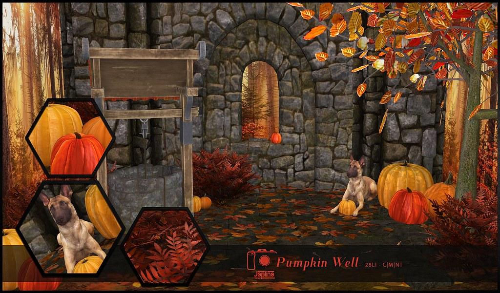 Joplino Backdrop Pumpkin Well @La vie en pose