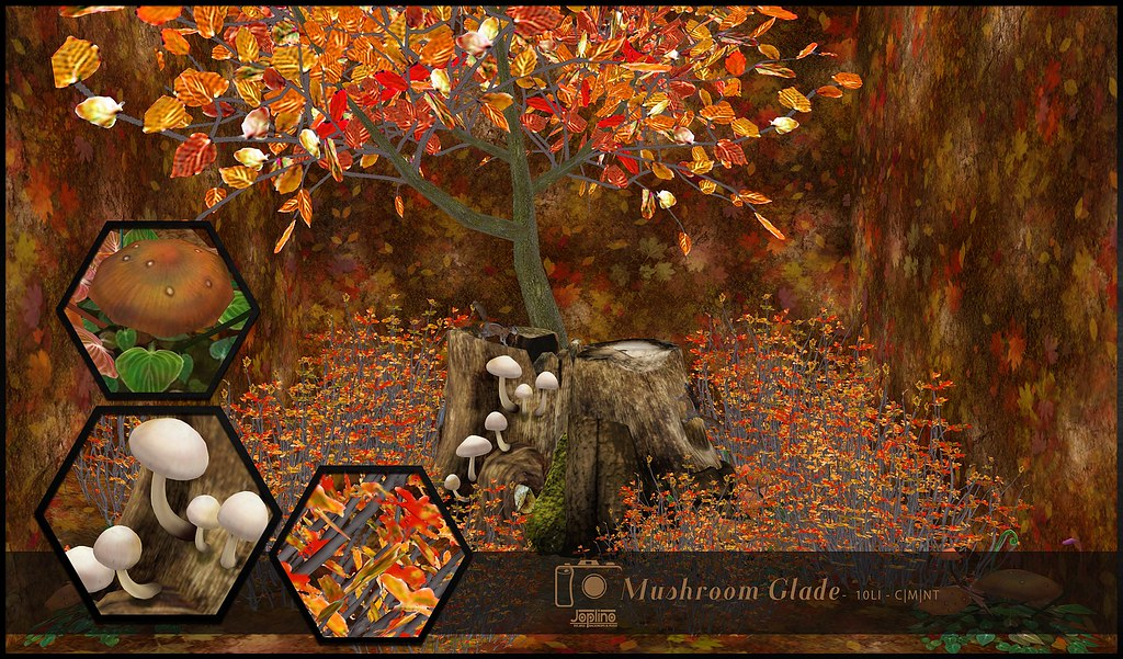 Joplino Backdrop Mushroom Glade [GIFT] @La vie en pose