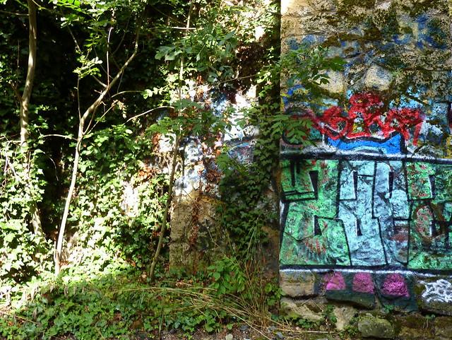 Graffs et végétation