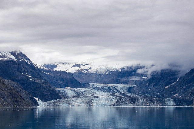 John Hopkins glacier-9640
