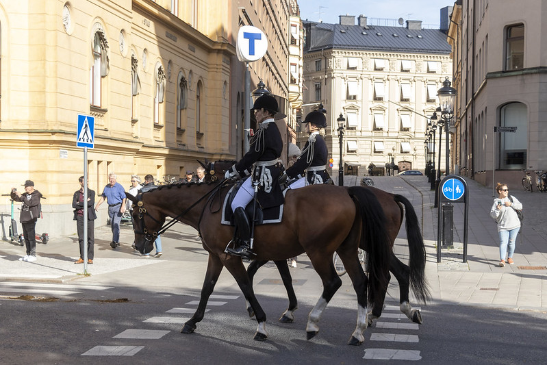 The Royal Guards