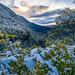 Sendero Desolacion - La Picada (Patagonia Chile)