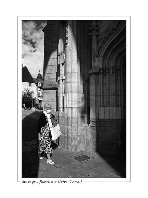 A flowery ray on Notre-Dame ! / Un rayon fleuri sur Notre-Dame !