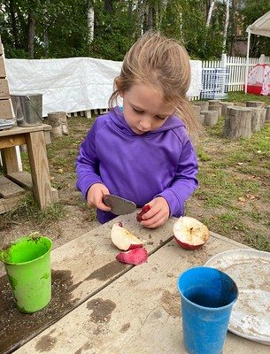 cutting apples fallen from the apple tree