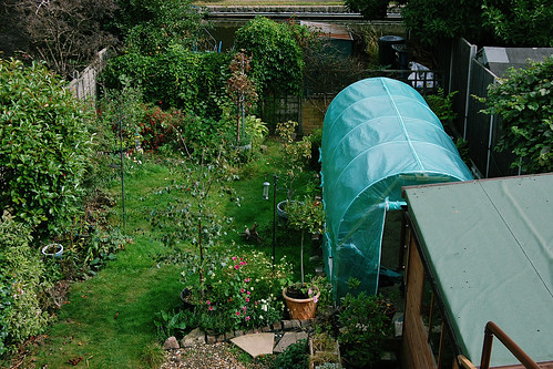 Looking Down on the Garden - September 2021