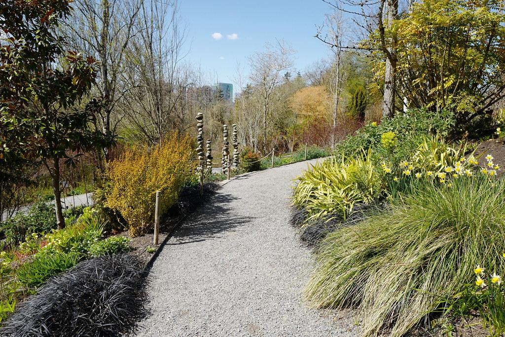 Pathway in Bellevue