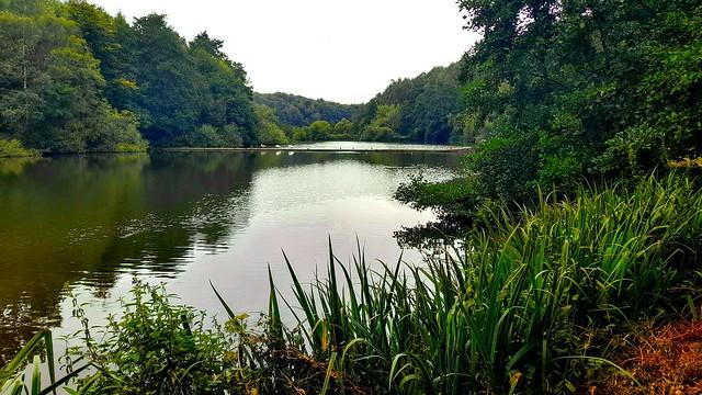 Lake at Newmillardam park