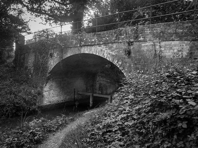 Basingstoke Canal West of Greywell-G9150481