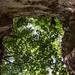 wąwóz lessowy // loess gorge