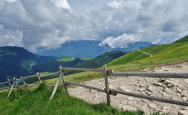 Italien, Italy,  Malcesine(TN) am Gardasee - Auf dem Monte Baldo (1760m) , 79217/20045