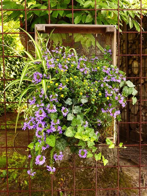 Floral Fantasy...