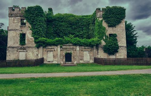 Donadea Castle.Ireland