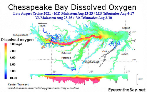 Map of hypoxic water volumes in Chesapeake Bay, August 2021