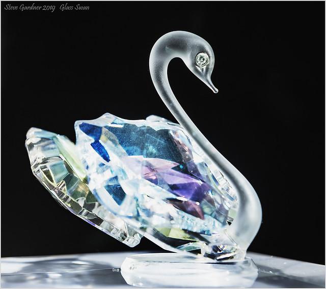 Glass SwanC