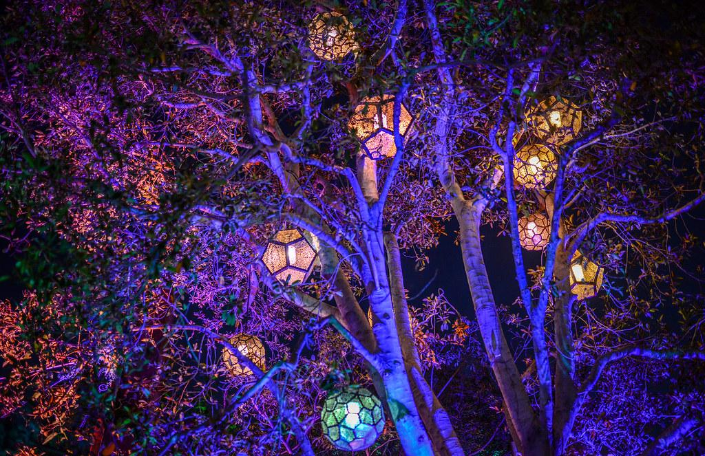 Lantern tree Avengers Campus DCA
