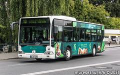 MS 60 TLM (#60) Transport Local Tirgu Mures