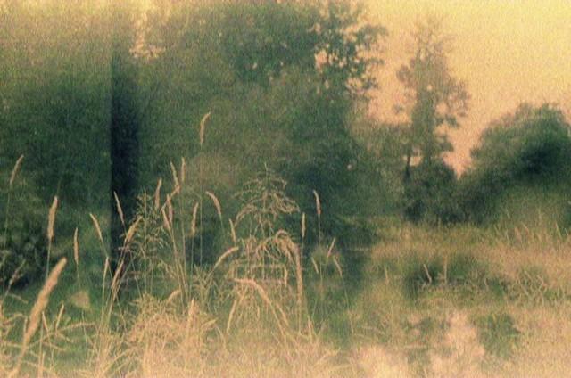 film swap with ✨ www.flickr.com/photos/kjohn2013