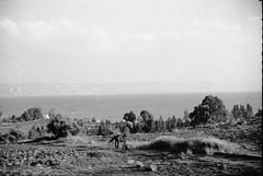 Sea of Galilee ca 1972