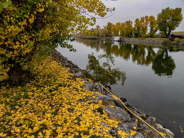 An Autumn scenery.