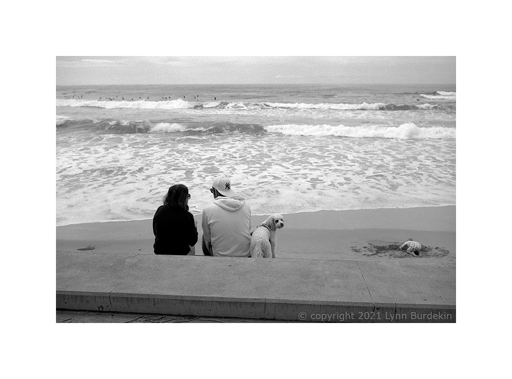 Dee Why beach, Sydney, spring 2021  #314