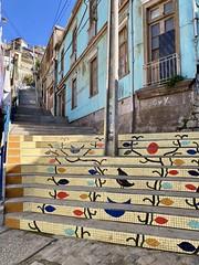 Escalera de Los Sueños. Cerro Santo Domingo, Valparaíso
