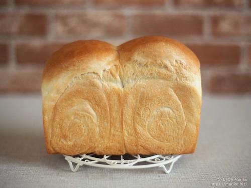 酒種食パン 20210918-IMG_3906 (4)
