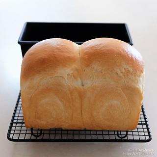 酒種食パン 20210918-DSCT5129 (2)